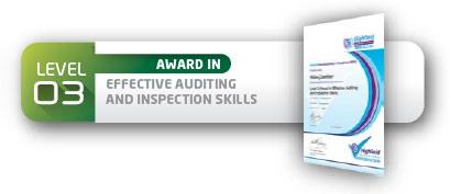 level3effectiveauditing